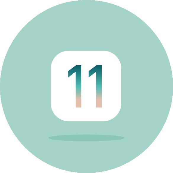 iOS 12 Compatible